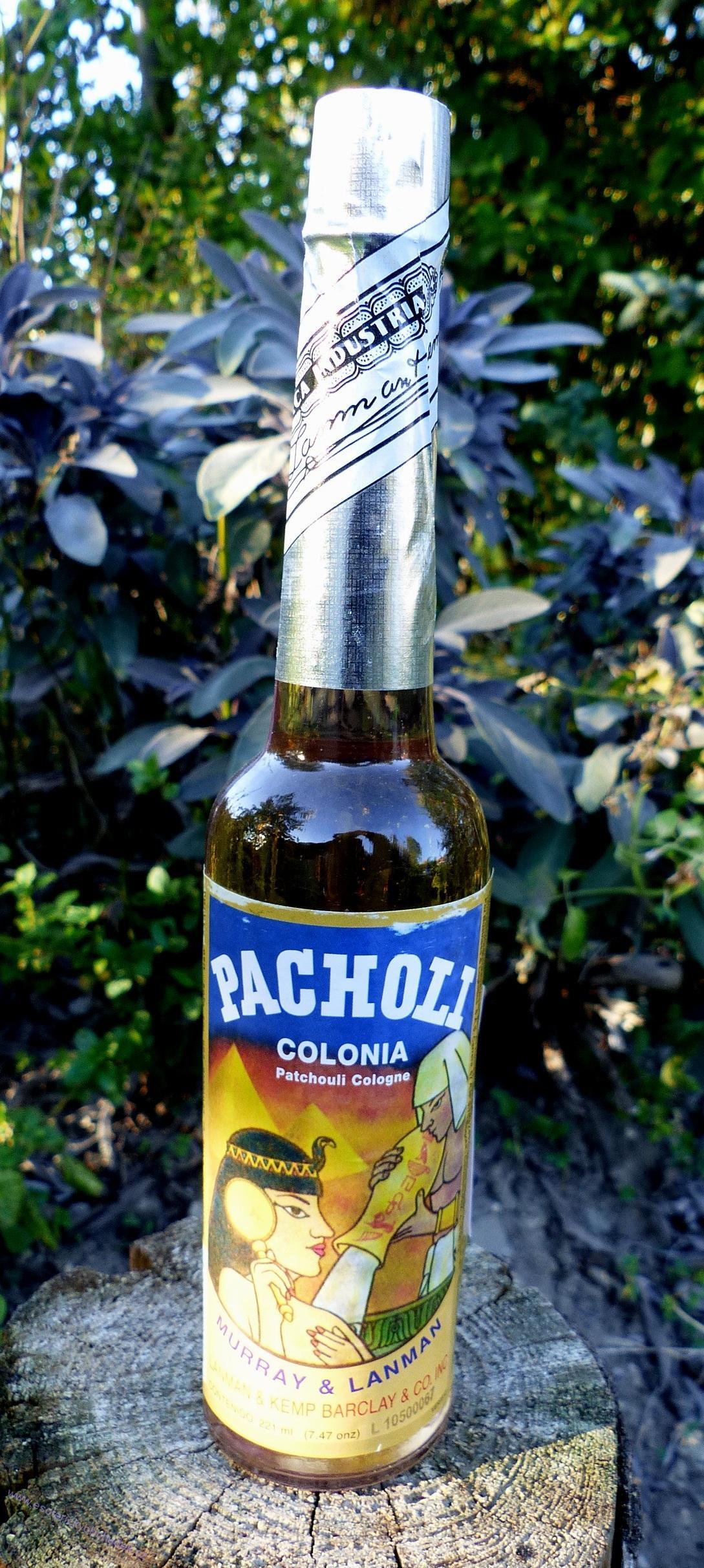 Šamanská vonná esence - AGUA DE PACHOLI – Pačuli - objem 221 ml